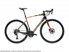 Argon 18 Dark Matter